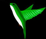 oiseau-mouche